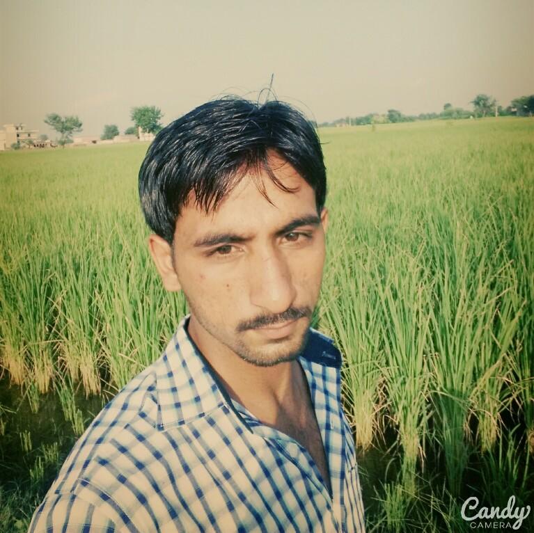 Usman Ali avatar picture