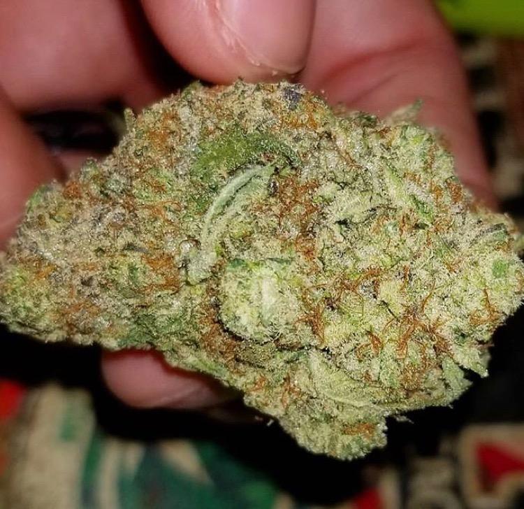 Cannabiscurecenter.com Quality-quantity☘️☘️☘️ Dm f