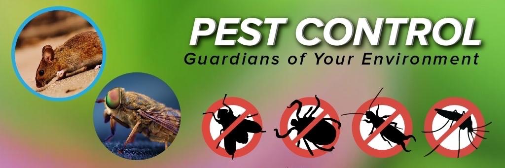 Pest Control in Dubai http://www.blackhorsepestcon